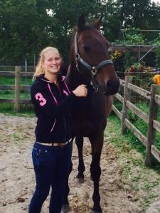 bruin paard polo vest
