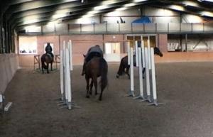 staanders stokken paard