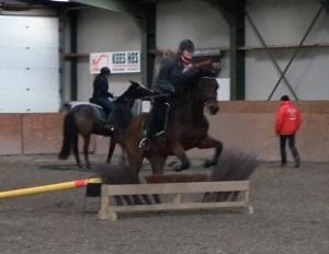 trec springen paard