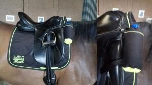 fleshouder aan zadel paard