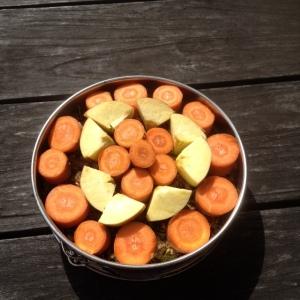 taart voor paard wortels appel biks muesli