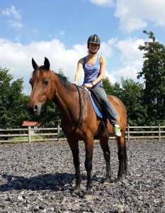 Varro paard kwpn neckrope bitloos