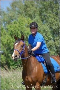 Ellen dabo dabo's design paard blauw outfit zadeltas