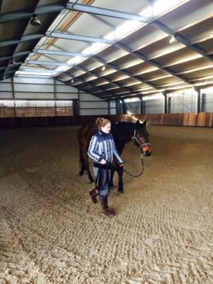 binnenbak kliniek Bodegraven paard