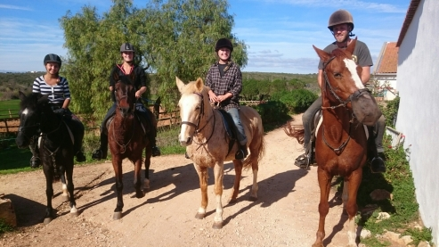 Vrijwilligers stal workaway buitenrit rideout portugal
