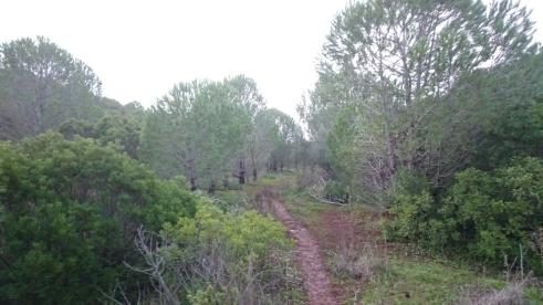 Track route Almadena